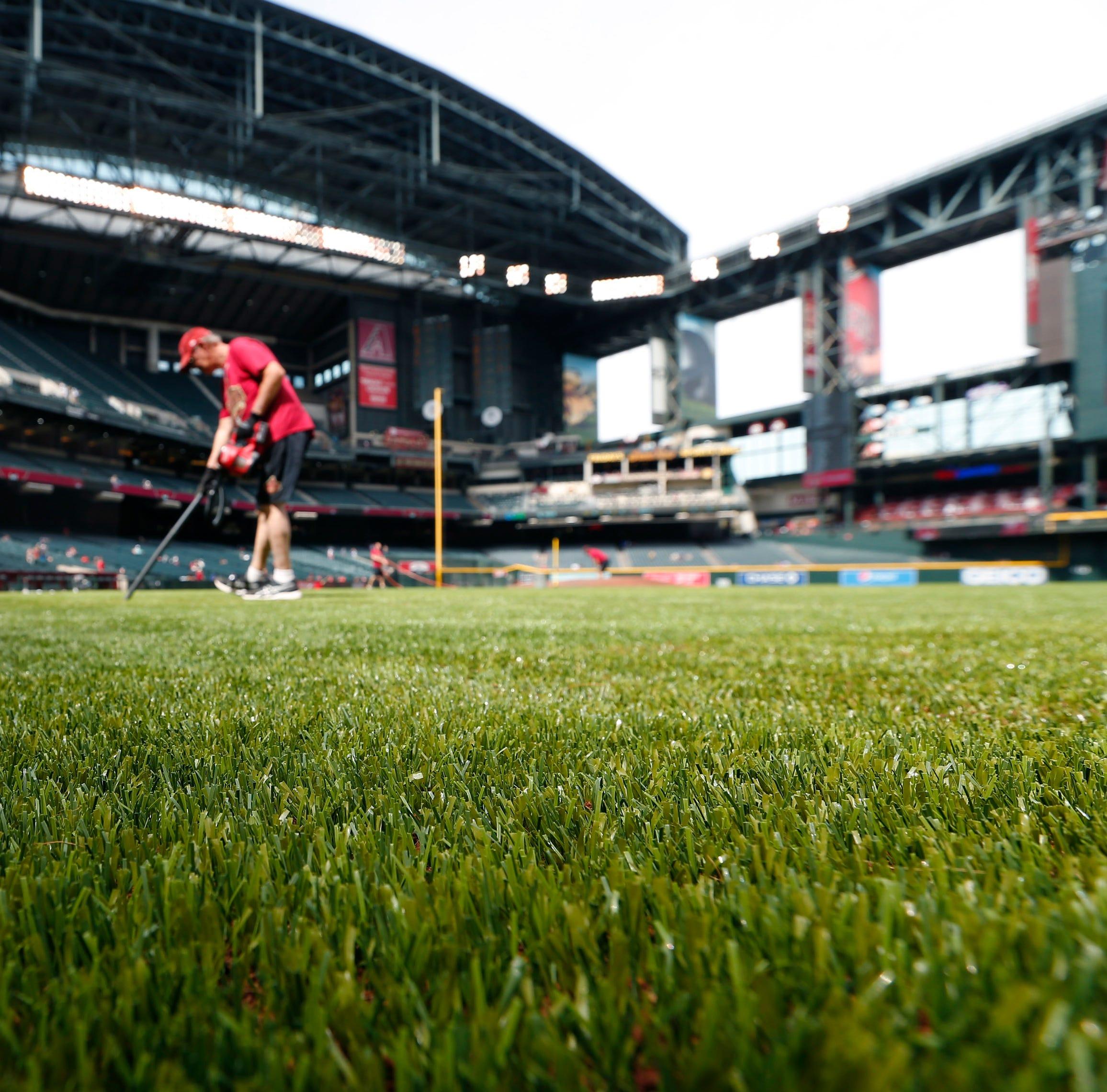 Arizona Diamondbacks' new turf is a sight to behold