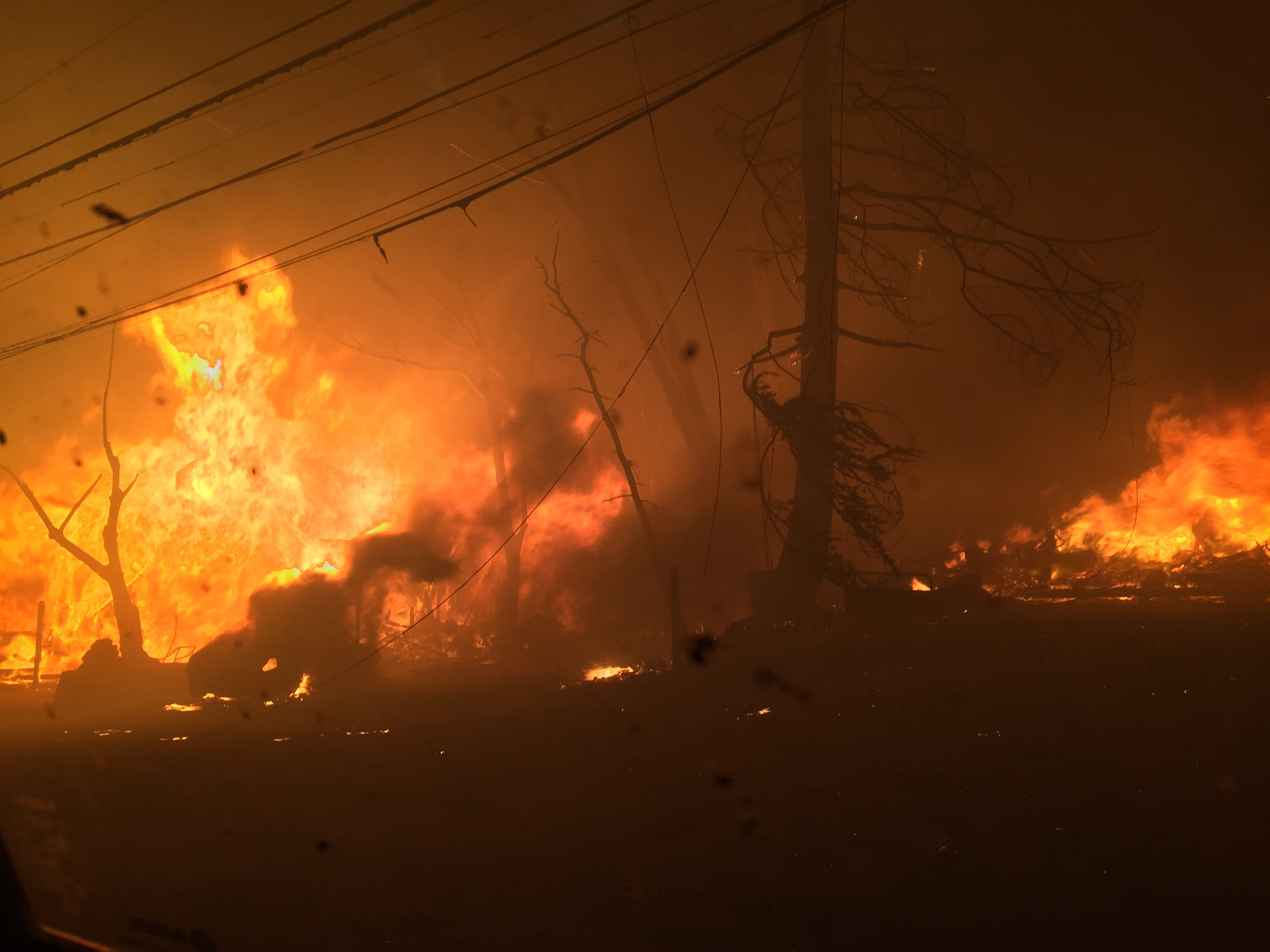Fire consumed trees and buildings all along the route as residents evacuated Paradise during the Camp Fire.