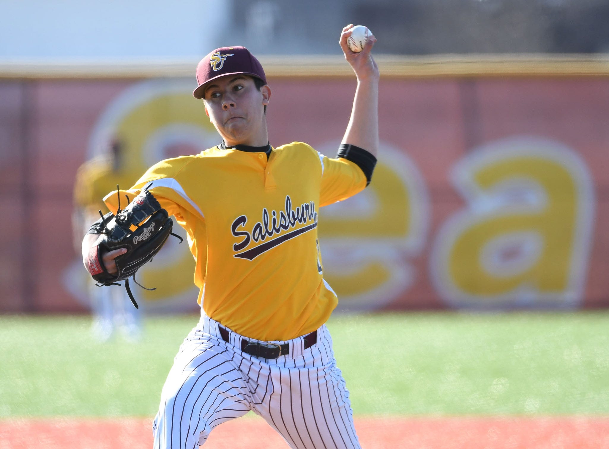 Salisbury University's Xavier Marmol on the mound against Wesley on Wednesday, April 3, 2019.