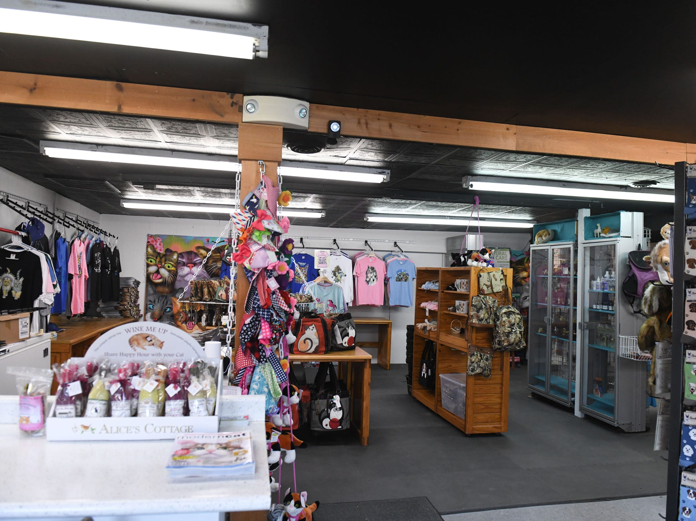 In A Cat's Eye, a new store opening on Chincoteague, Virginia in April 2019.