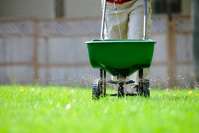 Feed your plants and lawn fertilizer to help them bounce back beautifully after harsh winter weather.