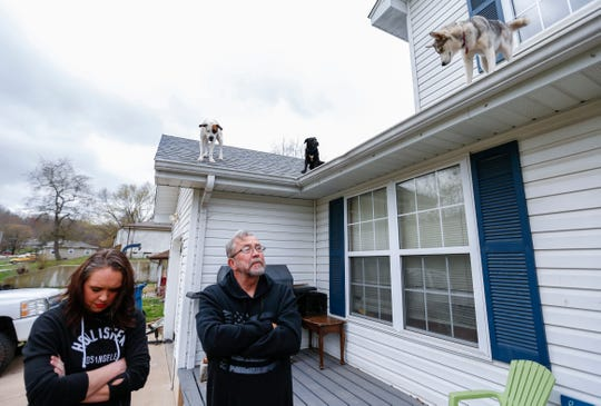 Erica Woolman and Ron Duncan talk about their dogs Bowie (left), Wolf, and Yuki that hang out on the roof of their house in Ozark on Thursday, April 4, 2019.