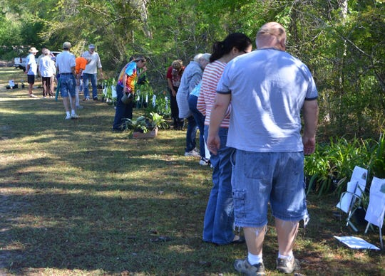 There are plenty of opportunities to purchase a variety of locally grown plants at Wakulla Master Gardeners plant sale on Saturday.