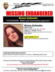 Briana Gallander