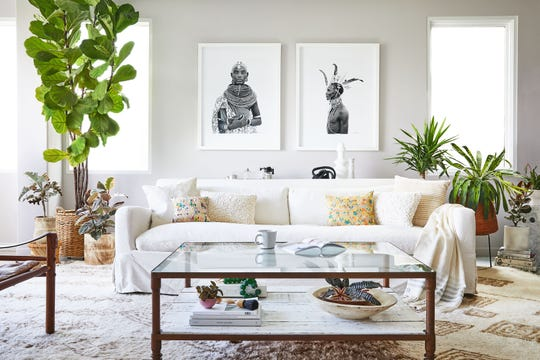 One of the great benefits of plants is that they pull toxins out of the air, including the chemicals released by furniture, carpet and paint in our homes.