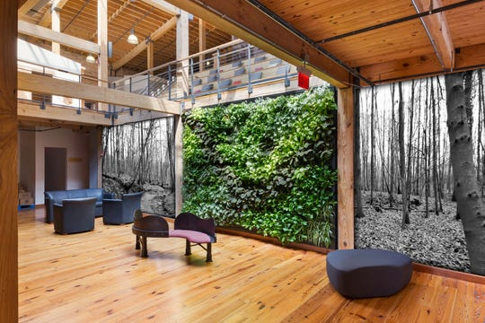 Plant-covered picture frames and walls create beautiful living works of art.