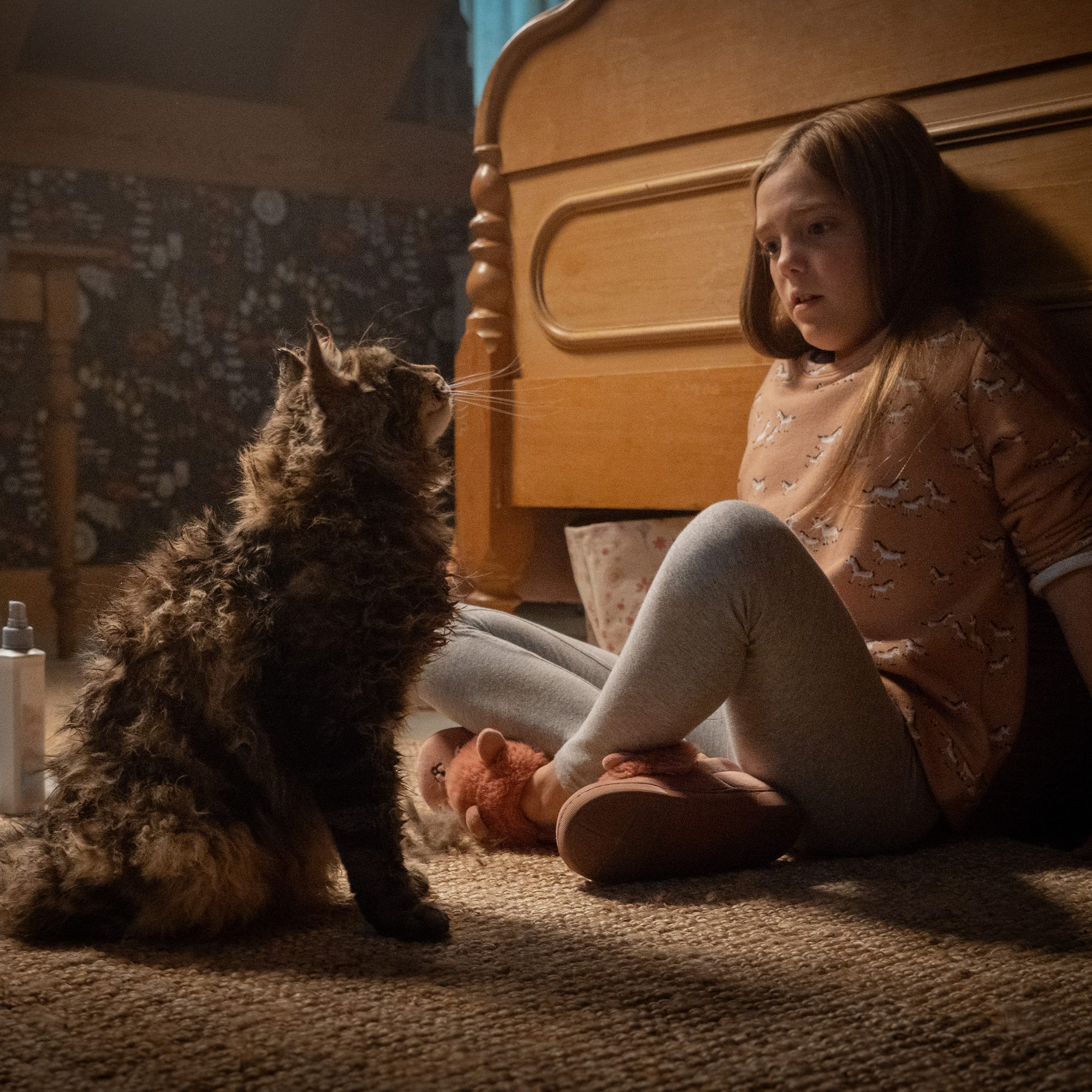 "Ellie (Jeté Laurence) wonders why her cat Church is acting so weird in ""Pet Sematary."""