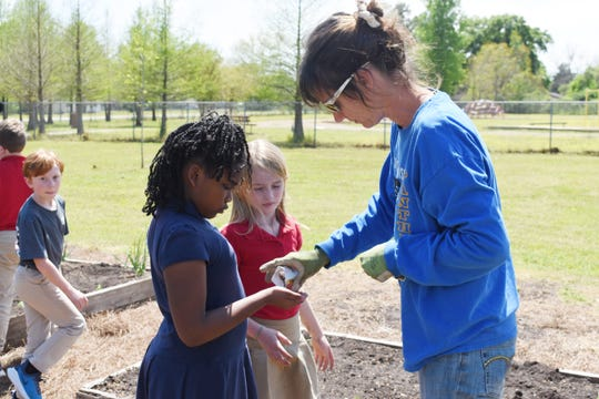 Cindy Baker (right), manger of the Food Bank of Central Louisiana's Good Food Project gardens, hands seeds to Phoenix Magnet Academic students tp plant in their school garden. Phoenix and Mabel Brasher Elementary School are involved in a pilot program that teaches how the S.T.E.M (Science, Technology, Engineering and Math) curriculum relates t gardening and nutrition. The program is a collaboration between the Food Bank of Central Louisiana and the Rapides Parish School Board.