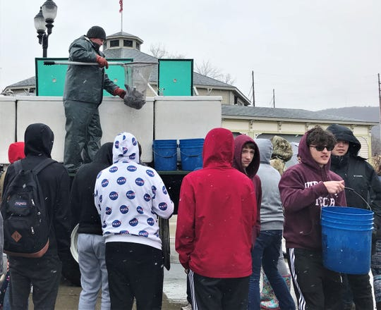 Ernie Davis Academy students watch as a DEC Bath Fish Hatchery employee scoops up trout for stocking in Elmira's Eldridge Lake.