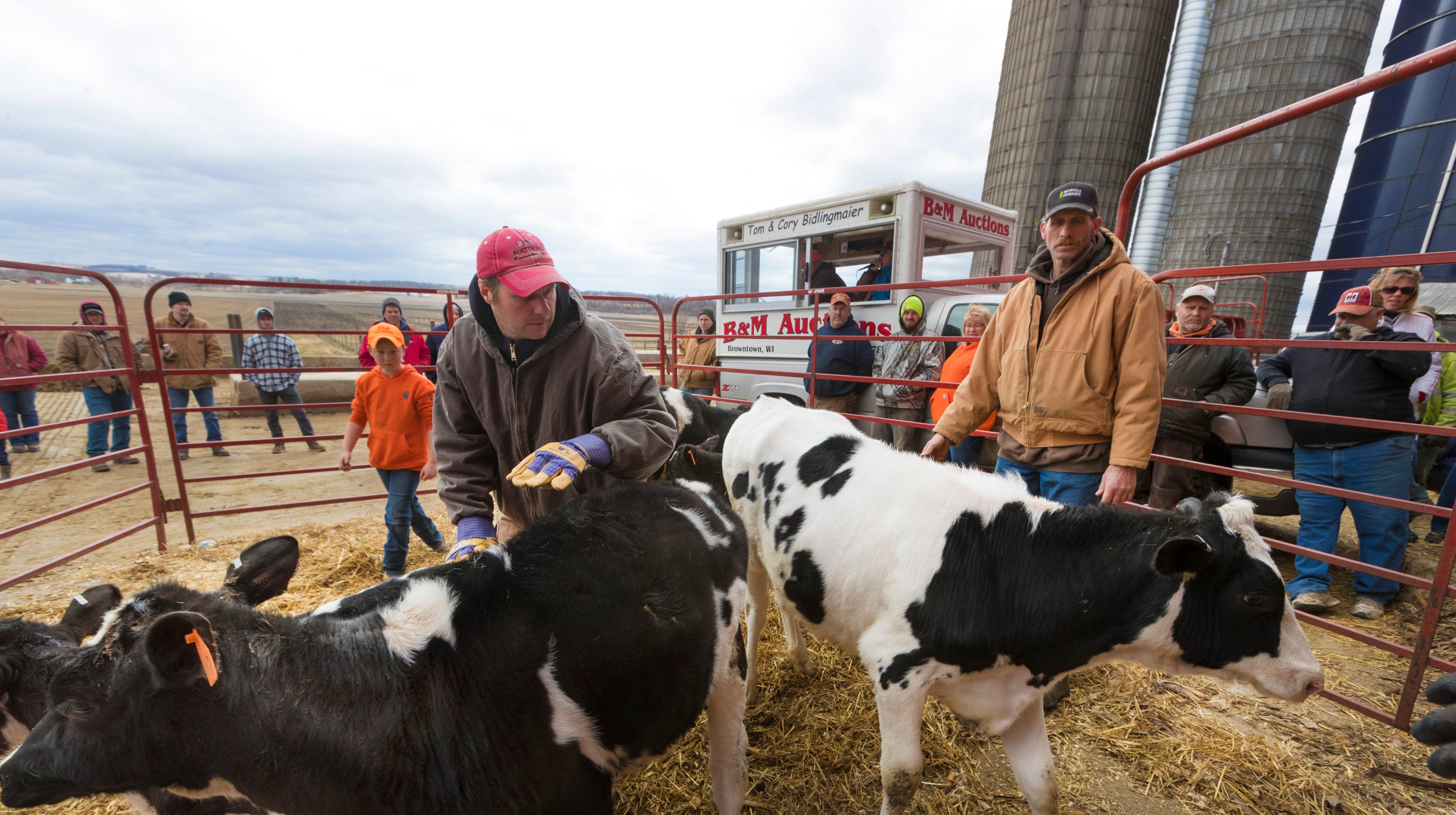 Farm Auctions