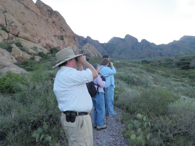Birdwatchers are on the lookout at Dripping Springs Natural Area