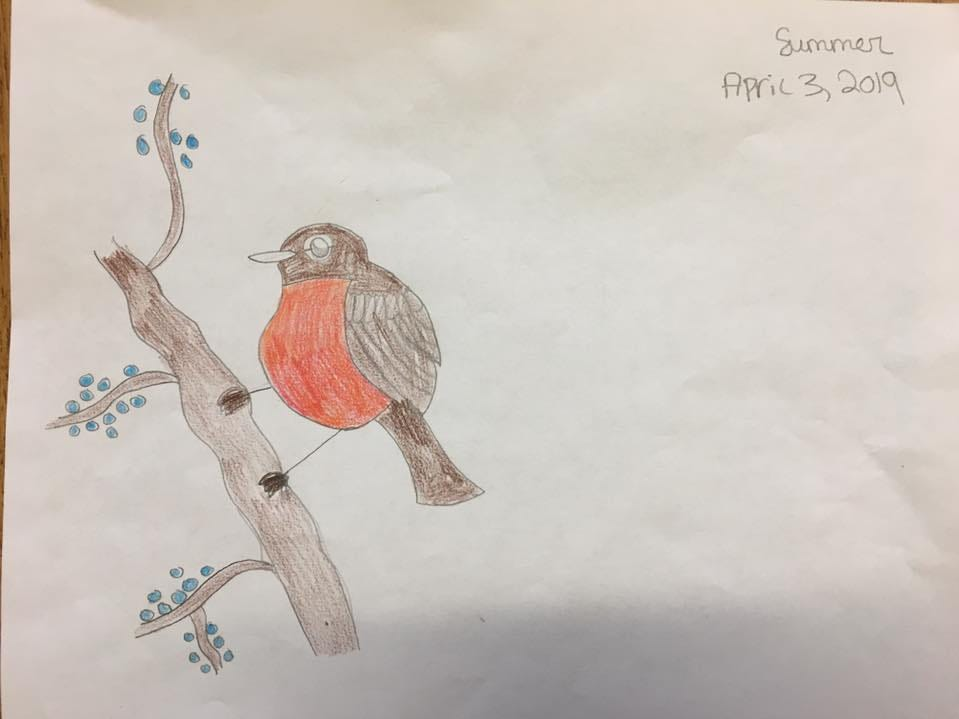 On the day Summer Bell Brown was shot and killed, she drew this picture of a robin in Rebecka Johnson's fifth-grade class at Holdeman Elementary School in Tempe.