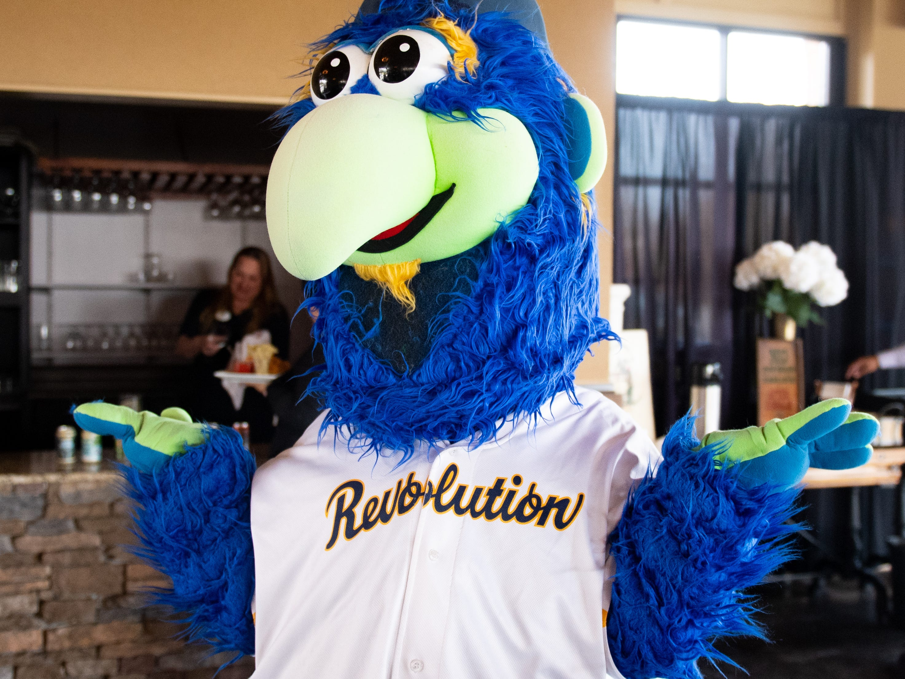 York Revolution's DownTown greets fans during the 55th Annual York Area Sports Night, April 4, 2019.