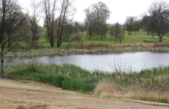 Leah's Pond at the McConnell Foundation's Lema Ranch in east Redding.