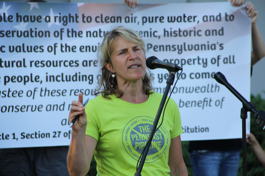 Maya van Rossum, environmental activist and founder of the Green Amendment movement, will be the speaker at Earth Day event at Temple Israel on April 22.