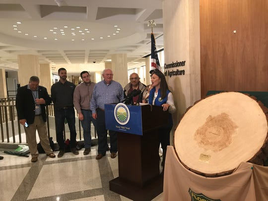 Agriculture Commissioner Nikki Fried brought the trunk of a fallen loblolly pine to a Hurricane Michael news conference