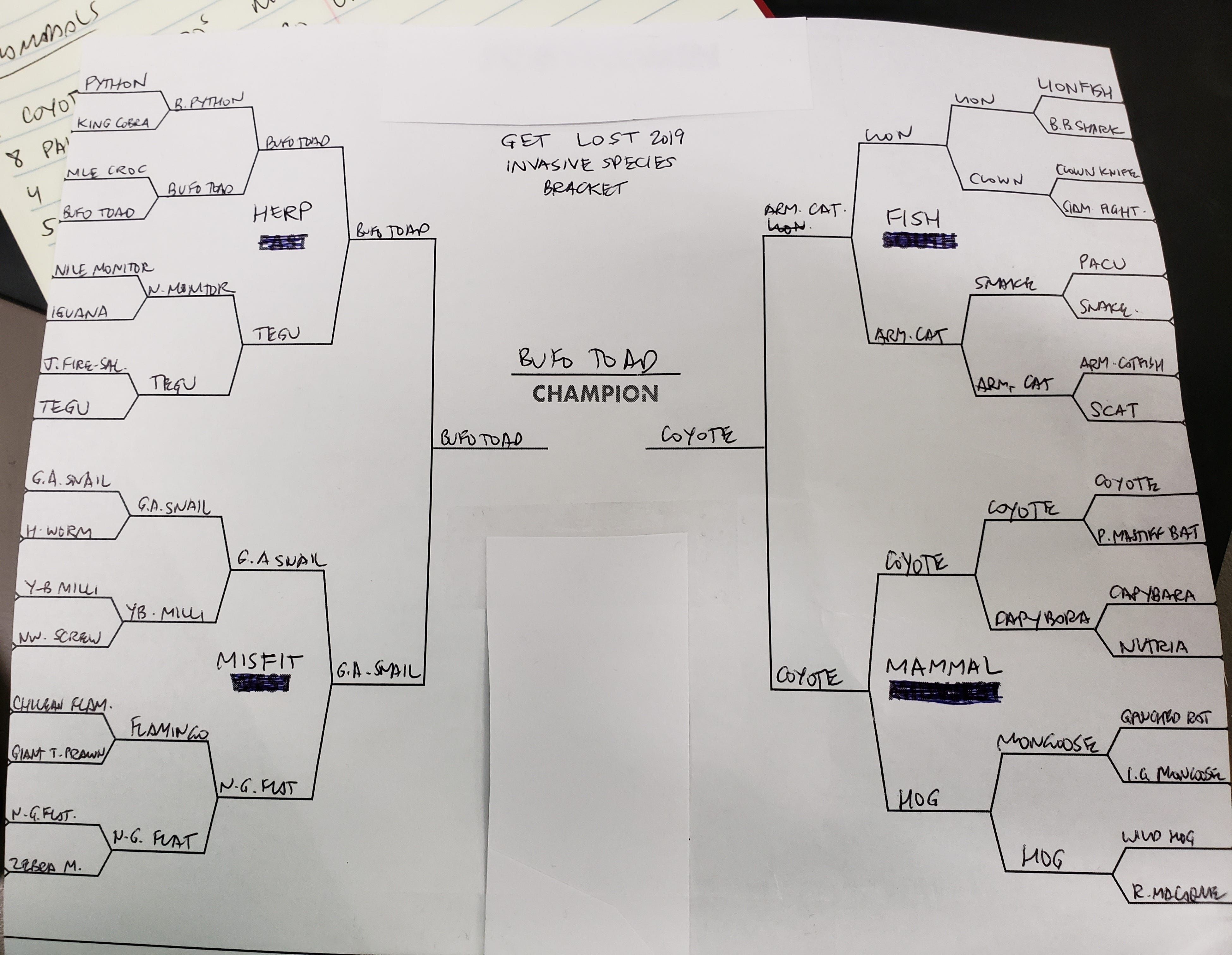 The Florida Invasive Species of the Year 2019 Bracket