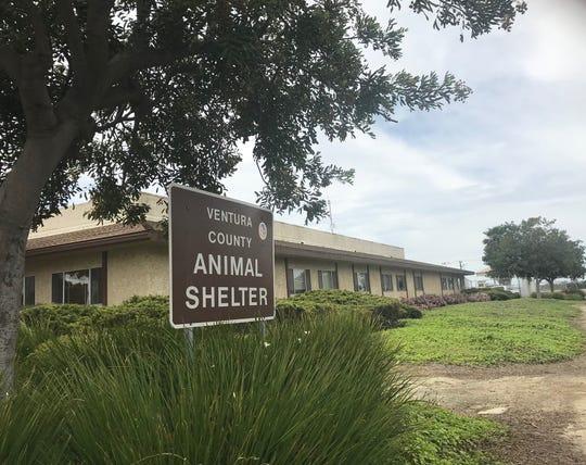 The Ventura County Animal Shelter lies at the Camarillo Airport.