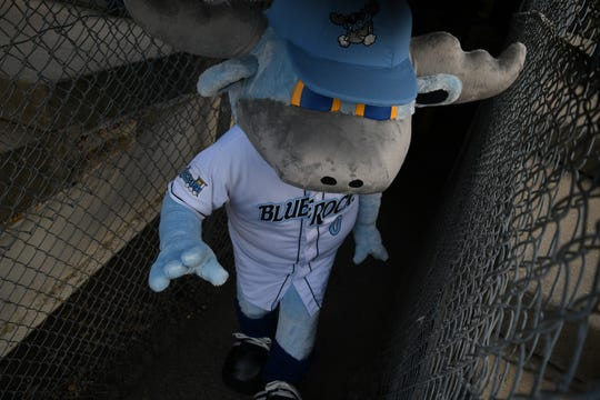 Wilmington Blue Rocks mascot Rocky BlueWinkle comes out of the tunnel before the teams season opener Thursday at Frawley Stadium.