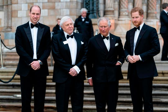 "Prince William, British naturalist, documentary maker and broadcaster David Attenborough, Prince Charles and Prince Harry stop on the steps of the London Natural History Museum before the global premiere of ""Our Planet"" on April 4, 2019."