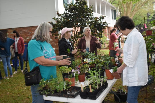 Kent Plantation House will host their annual Spring Herb Day from 9 a.m. to 5 p.m. Friday and Saturday. A list of herbs and prices will be posted on Facebook Friday morning. Those who want shop in person must call (318) 487-5998 to schedule an appointment. Social distancing protocols will be followed. Orders can be taken over the phone at (318) 487-5998 and can be picked via drive-thru.