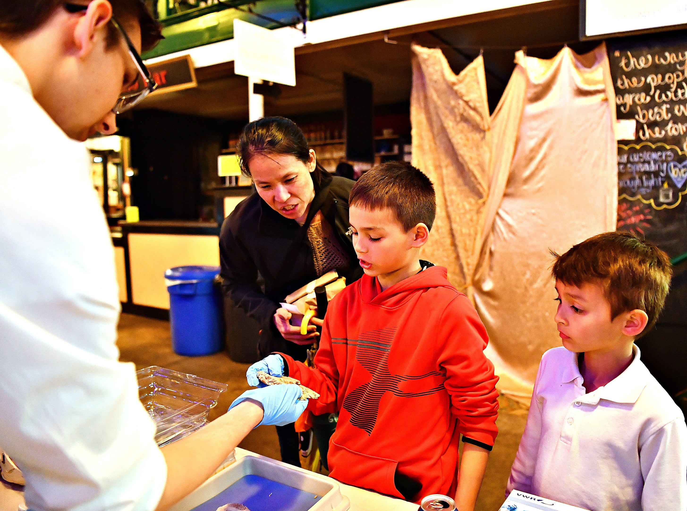York College senior Nathaniel Boyer, left, hands a slice of human brain to Weston Duckett, 9, while Duckett's mother Karen Duckett and brother Andon Duckett, 7, all of Manchester Township, look on during York College's Brain Fair on First Friday at Central Market in York City, Friday, April 5, 2019. Dawn J. Sagert photo