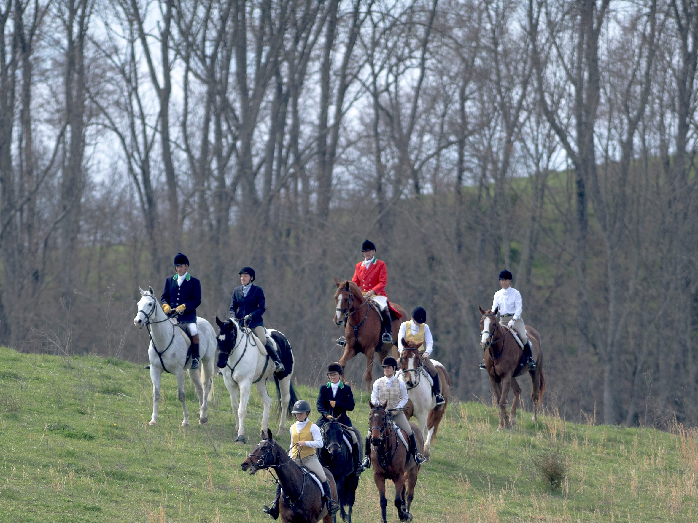 A group of hunters walks down a hill led by a pack of foxhounds during a fixture at Blackberry Ridge Farm in Greeneville, Tennessee on Saturday, March 30, 2019.