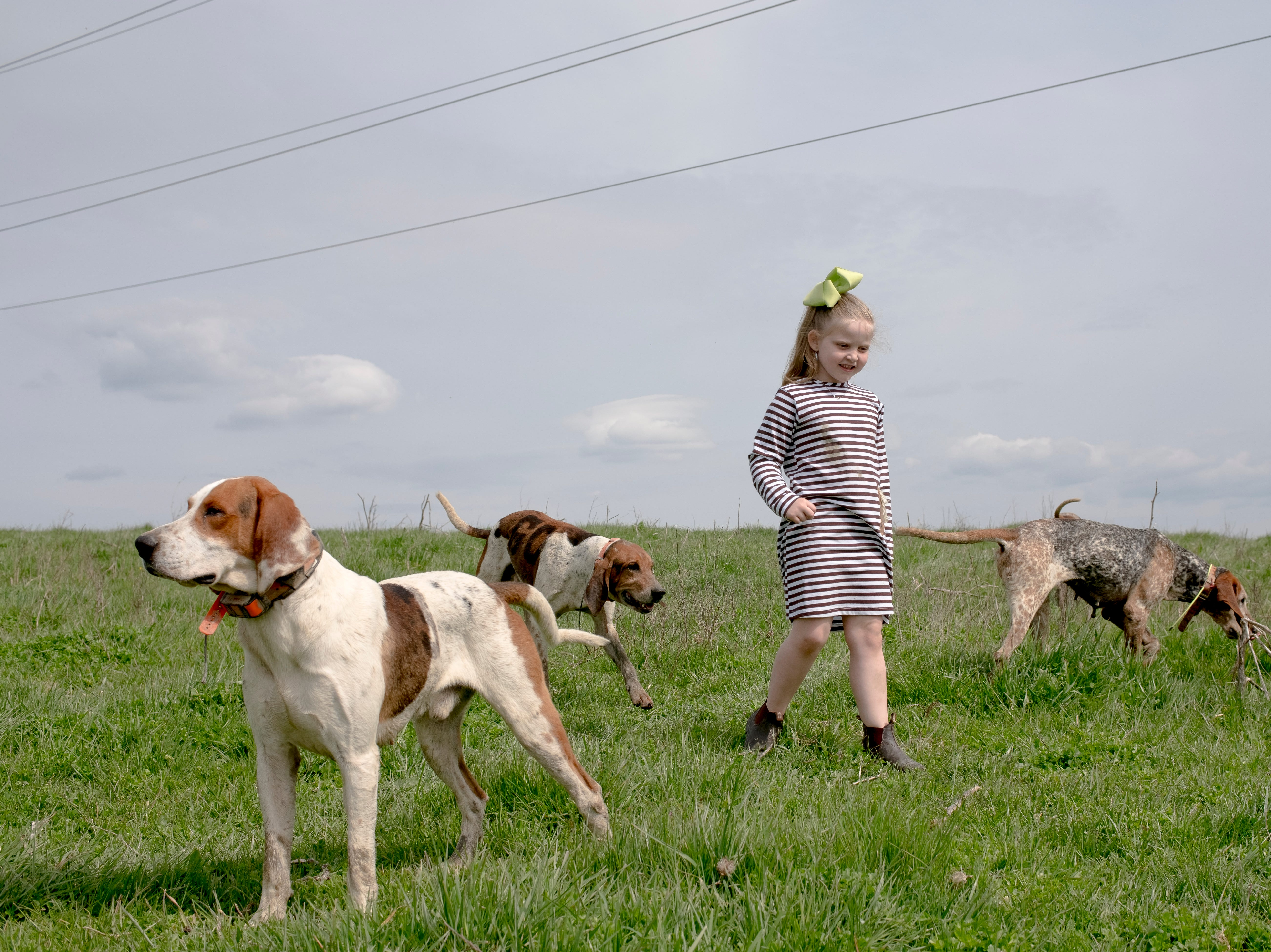 Finley Open, 6, walks among foxhounds while taking a break during a fixture at Blackberry Ridge Farm in Greeneville, Tennessee on Saturday, March 30, 2019.