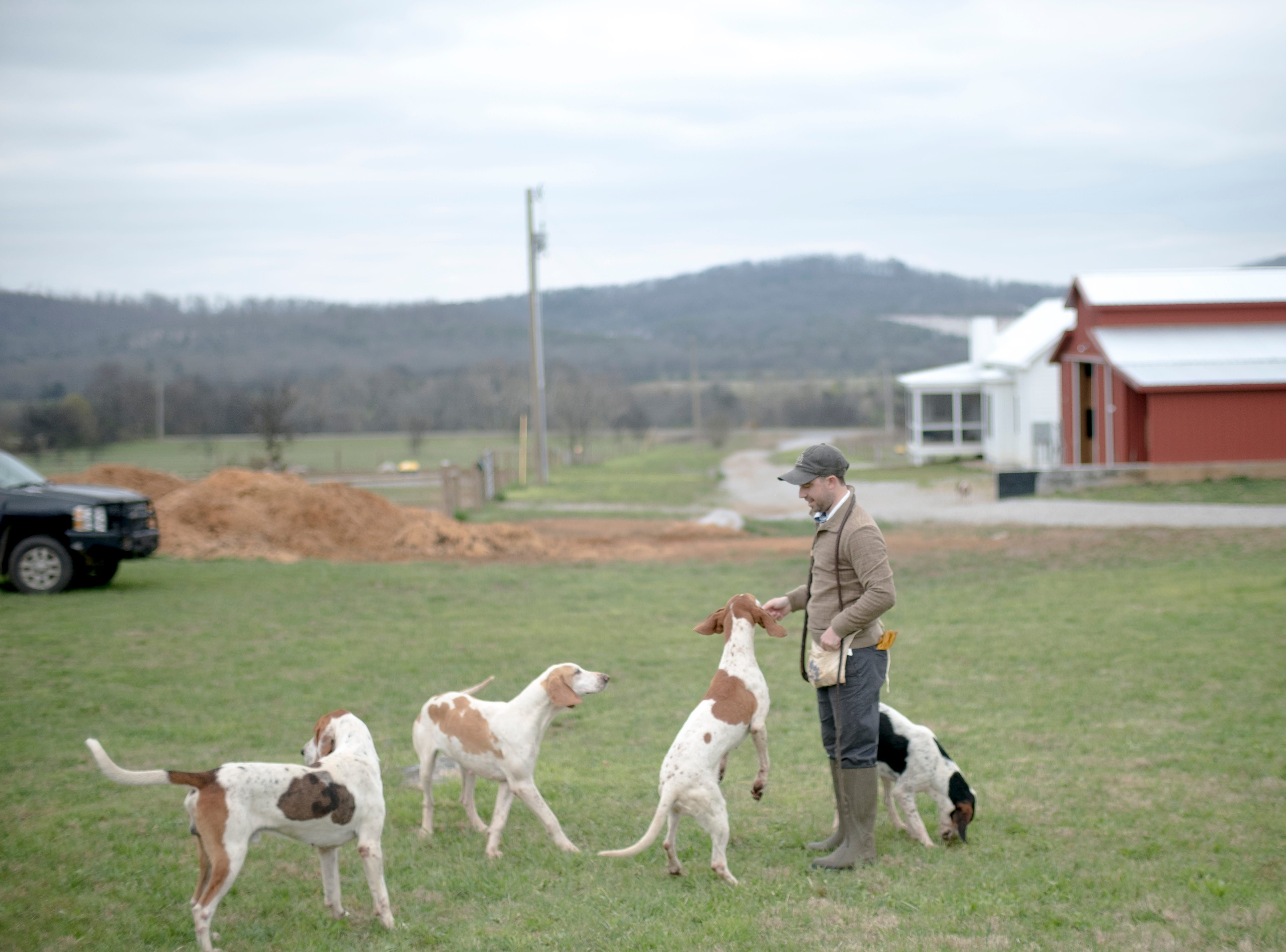 TVH Master Huntsman Ryan Johnsey plays in a field with his Penn-Marydel foxhounds at the club's kennel in New Market, Tennessee on Tuesday, March 26, 2019. The hounds are a breed of American Foxhound that was bred in the states of Pennsylvania, Maryland, and Deleware favored for their excellent noses and loud bellow.