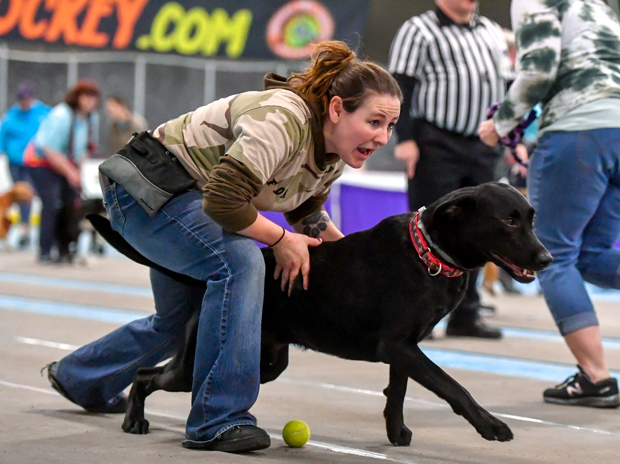 Raquel Neighoff of Marietta launches her black lab Riot as team Flyball Dogs Anonymous from Wrightsville compete against 40 other teams in the Clean Break Flyball tournament at the Yellow Breeches Sports Complex in New Cumberland, Sunday, April 7, 2019.