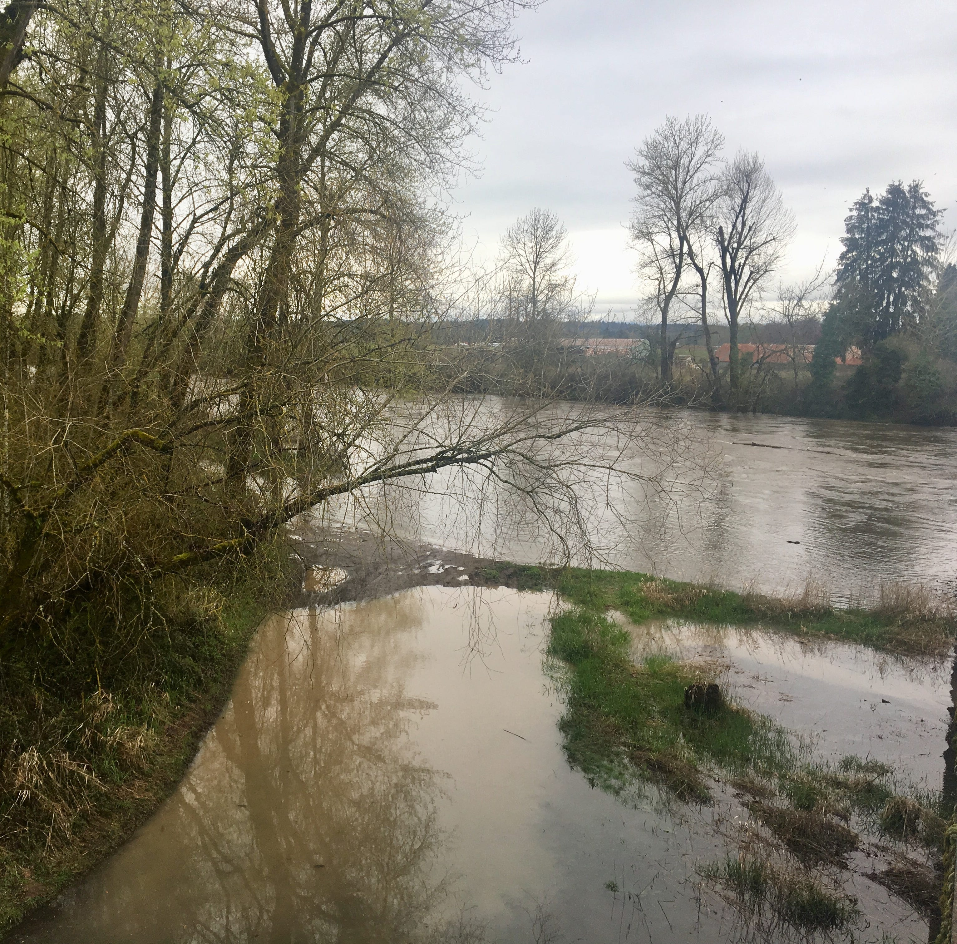 Heavy Oregon rain through Monday expected to bring flooding on Willamette, Santiam rivers