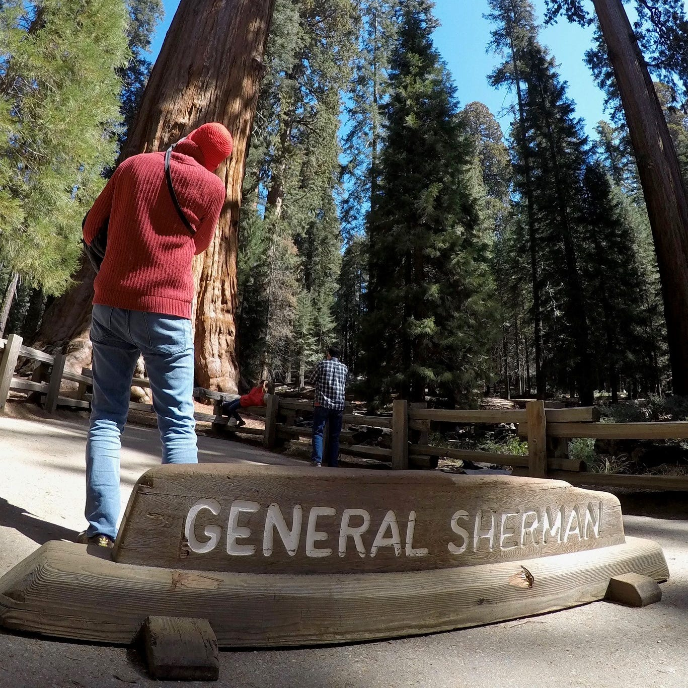 21st-century intrusion or necessary convenience? Cell service coming to Sequoia National Park