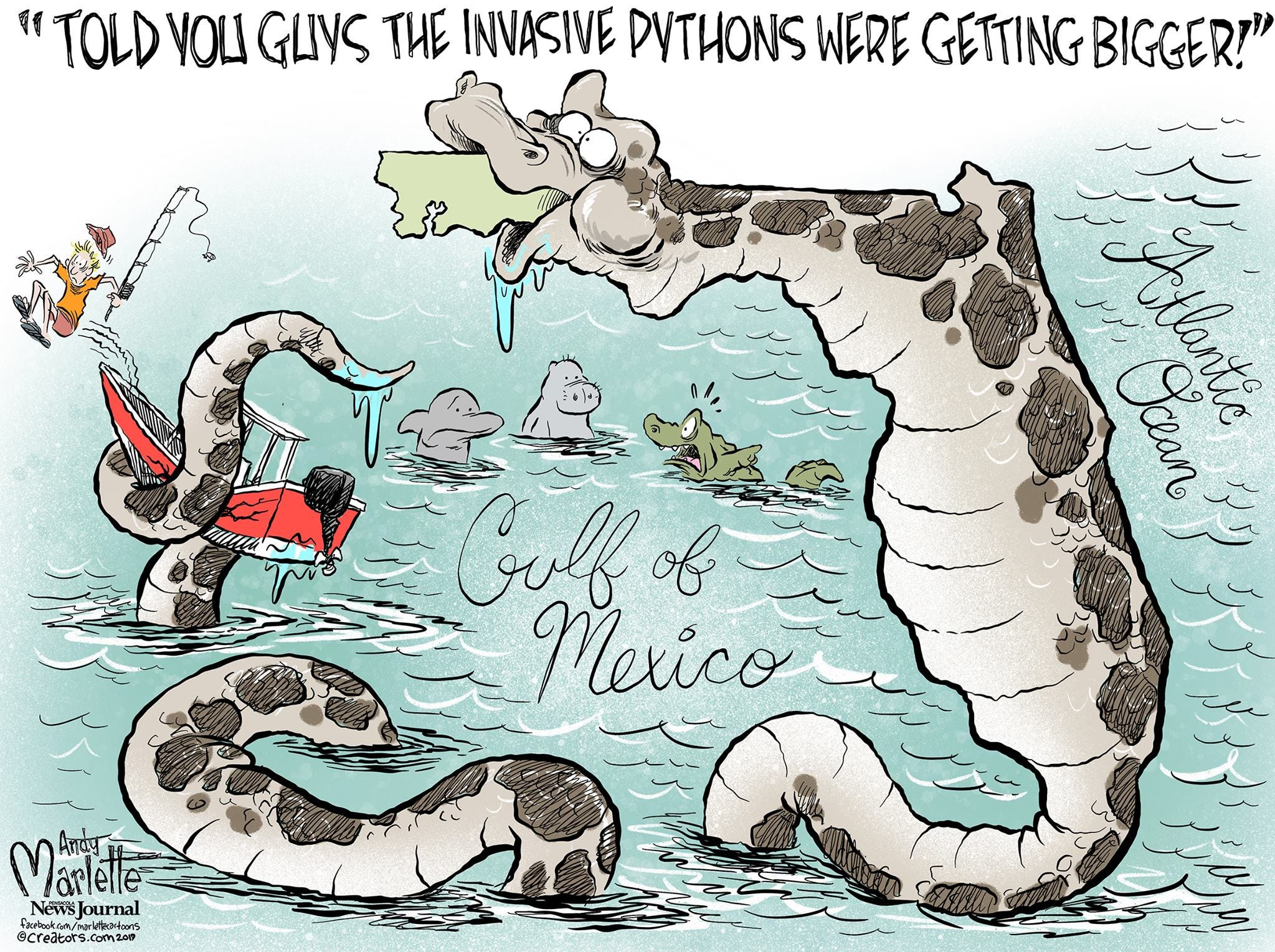 Florida pythons