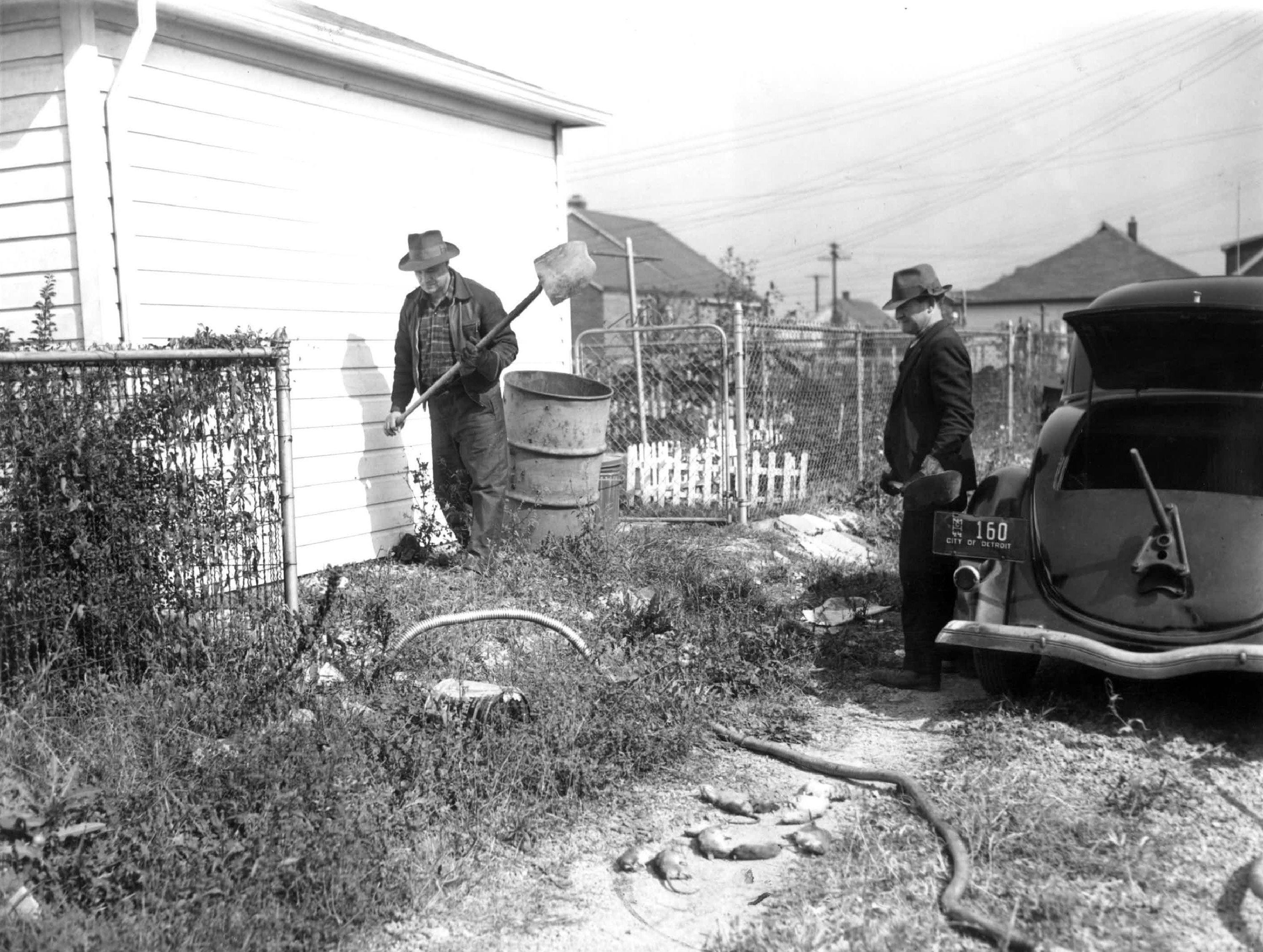 A rare glimpse at the rat extermination business in 1944: Joe Agneloo and 