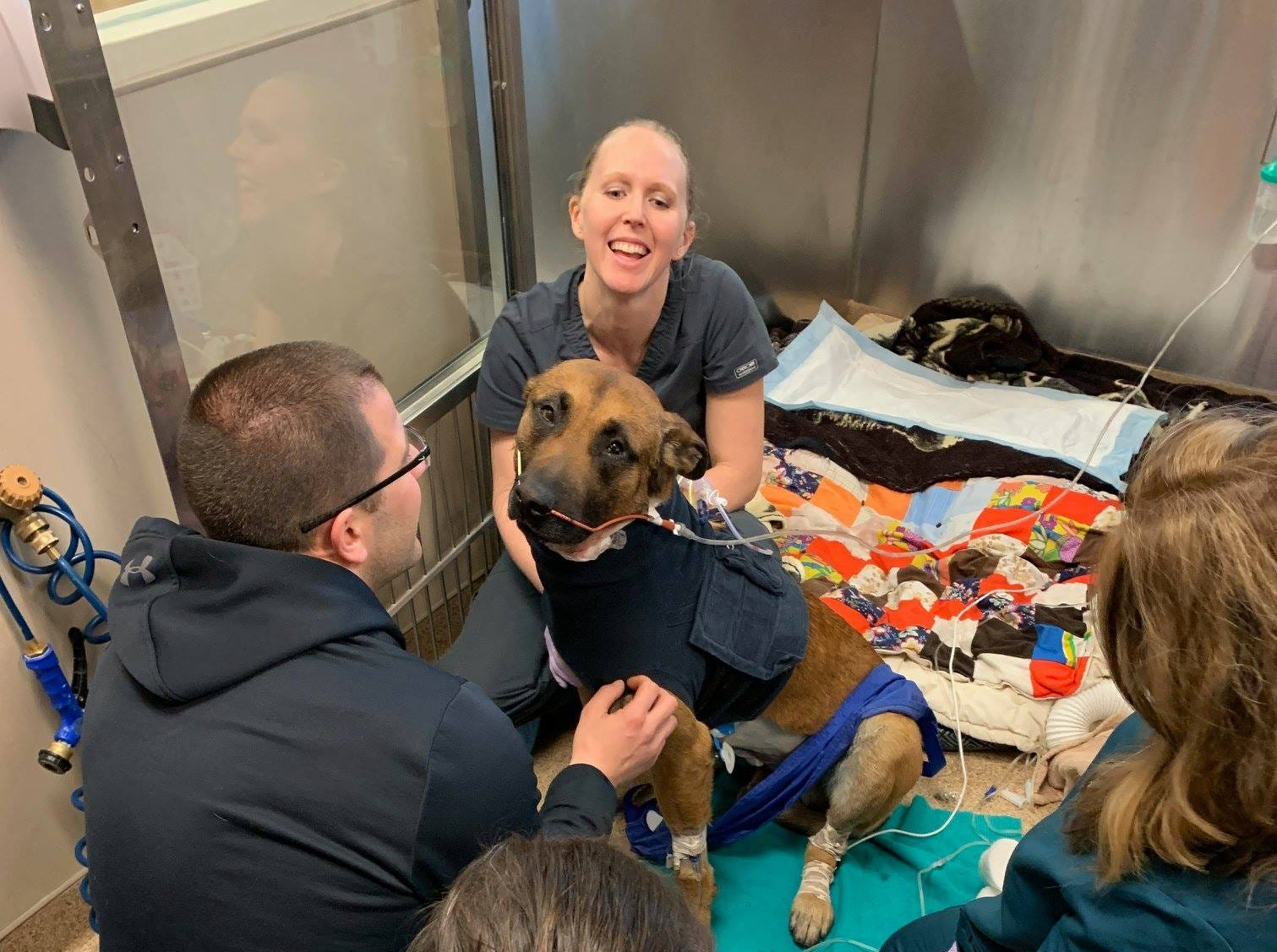Green Bay Police dog Pyro has undergone multiple surgeries since being stabbed Sunday night. He is currently recovering in the intensive care unit at the Animal Referral Center in Appleton. Pyro is in critical but stable condition as of Monday afternoon.