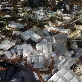 Piles of school lunch plates found dumped in woods. Nobody knows how it happened.