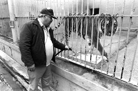 "032411 BYGONE            Louie Bell gives ""TOM"", the Memphis State mascot, a fresh drink of water in March 1991.  Bell has looked after the huge Tiger since ""TOM"" was just a cub.  Dave Darnell / The Commercial Appeal files."