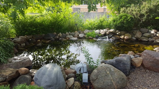 Minnetrista's ornamental ponds need to be readied for the growing season.