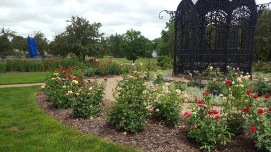 The Minnetrista Rose Garden