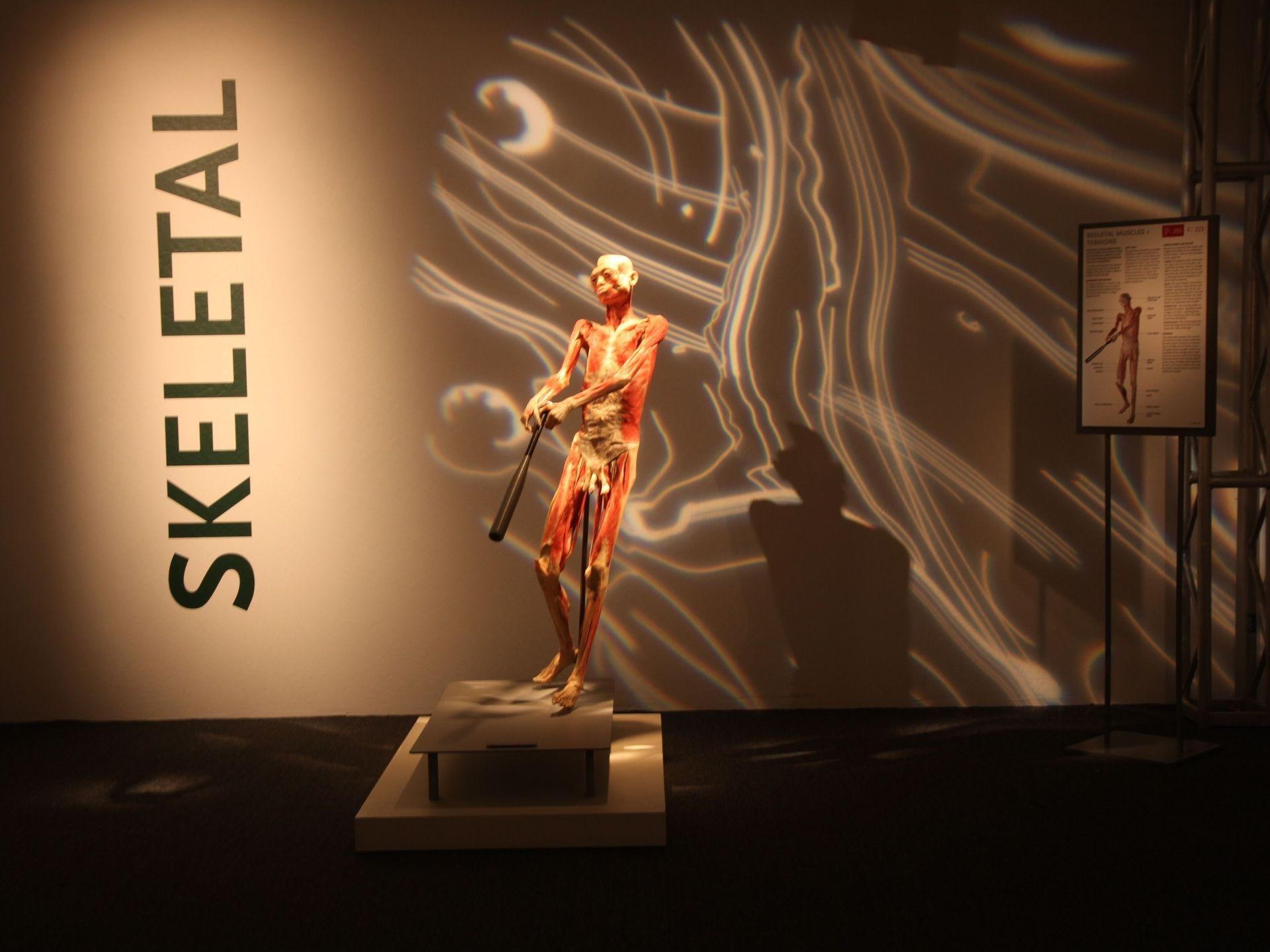 La exposición lleva a los huéspedes a través de nueve galerías autoguiadas.