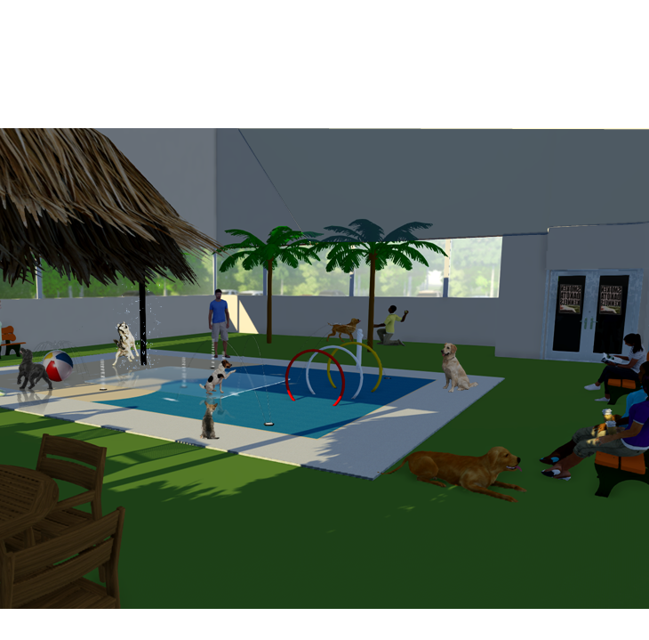 Indoor splash park for dogs will include tiki bar for owners, pets