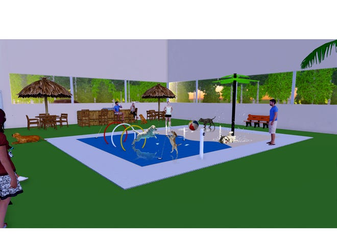 A rendering shows the new dog splash park planned for The Resort by SDK on South Minnesota Avenue.