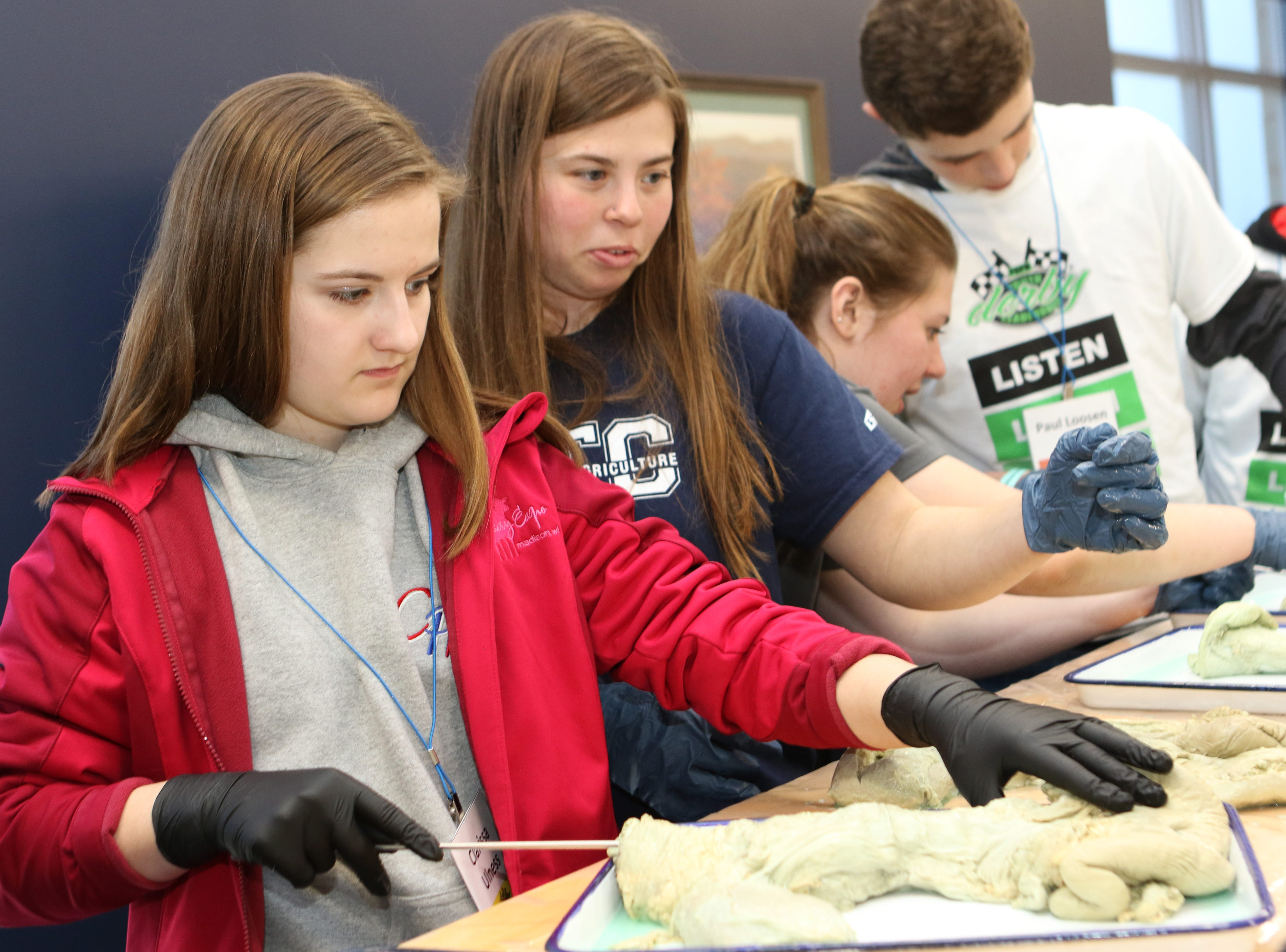 Clarissa Ulness, of Valders, practices the technique of artificial insemination on a cow's reproductive tract during a lab at Lakeshore Technical College as part of the Professional Dairy Producers of Wisconsin Youth Leadership Derby on April 6.