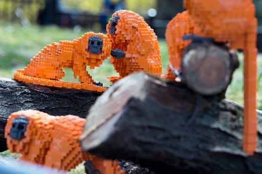 LEGO Golden Lion Tamarin monkeys 'climb around' at the Philadelphia Zoo.