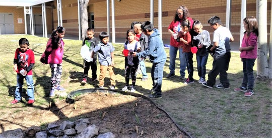 Students take turns watering bulbs planted in the fall that are just beginning to sprout.