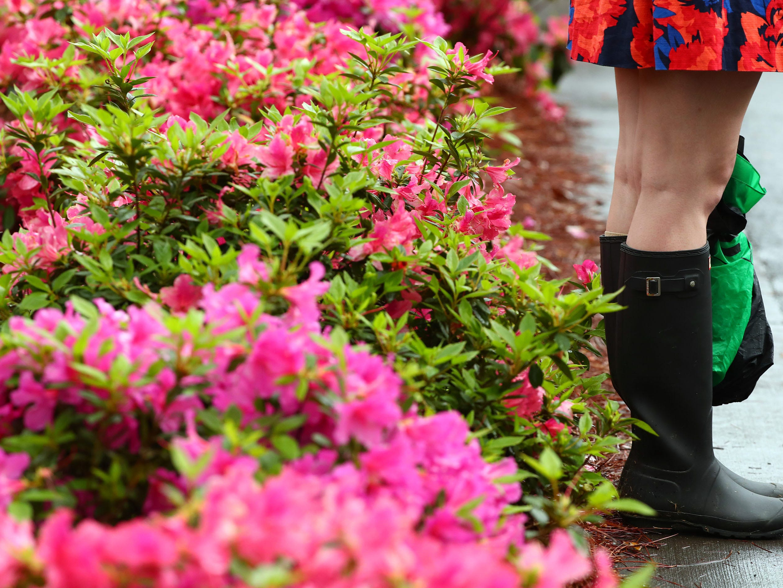 Apr 9, 2019; Augusta, GA, USA; A patron stands next to blooming azaleas wearing boots after play was suspended at 10:00 AM EST, as thunderstorms travel towards the course during a practice round for The Masters golf tournament at Augusta National Golf Club. Mandatory Credit: Rob Schumacher-USA TODAY Sports
