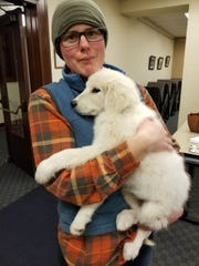 Oregon Cougar Action Team is offering  Great Pyrenees and Maremma puppies for adoption through its Guardian Dog Livestock Protection Program for small subsistence farmers throughout Oregon.