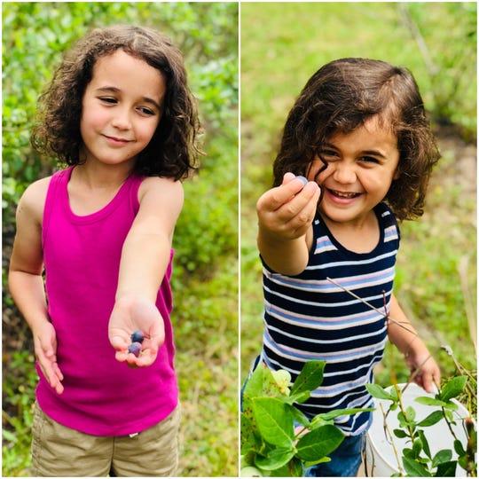 Apollonia and Viv Acevedo pick blueberries.