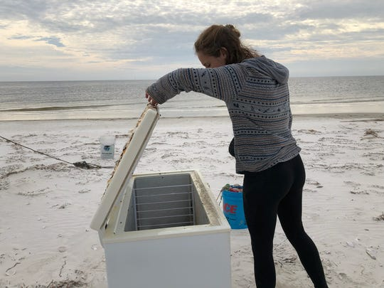 Genevieve Printiss inspecting a freezer during post-Michael beach clean up.