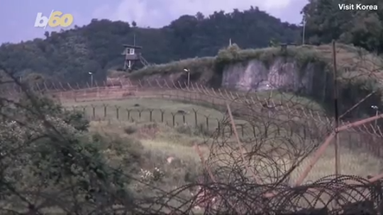 South Korea will let you go for a hike along the heavily-armed DMZ